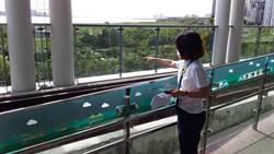 輕颱哈格比海上警報  淡海輕軌防颱整備措施完善
