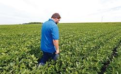 美國農民夢魘來臨