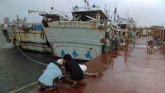 哈格比颱風將屆 南市農業局籲農漁民加強戒備