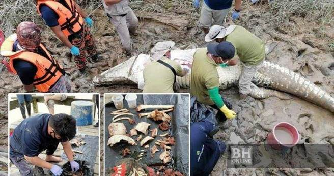 馬來西亞一名14歲少年遭巨鱷拖下水面,搜救人員捕獲牠剖肚後驚見人體殘肢與衣服碎片。(圖/翻攝自《每日新聞》)