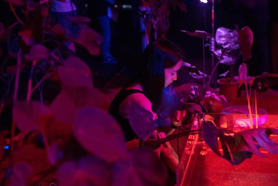 藝術家林亭君、張欣和利安.摩根觀察疫情帶給世界的改變,合力打造作品《日月潭是一個水泥盒》,帶觀眾從台北迪化汙水處理廠,走進台北試演場,最後進到一座人工打造的植物溫室,聆聽預先錄製的植物聲音,以及現場演奏音樂,在音樂裡沉澱自我,並藉此想像未來世界的可能性。(台北藝術節提供)