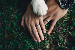新婚伴侣拍甜蜜婚戒照 爱犬乱入伸萌掌融化30万人
