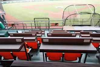中職》台南球場推出收費「球探席」
