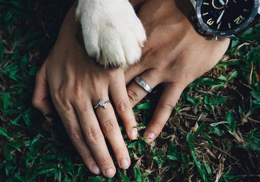 新婚伴侶拍甜蜜婚戒照 愛犬亂入伸萌掌融化30萬人(示意圖/達志影像)