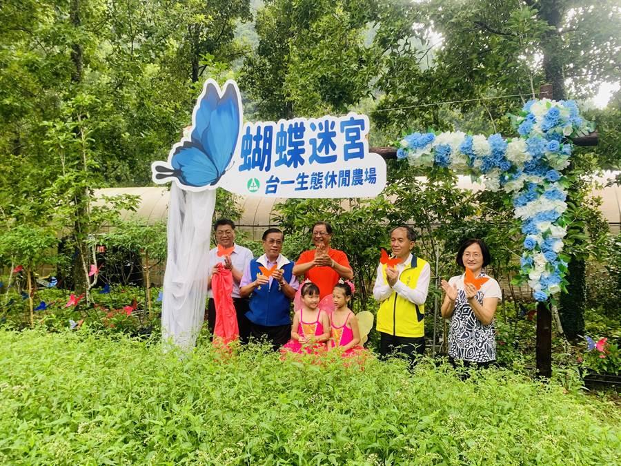 台一生態農場「蝴蝶迷宮」3日開幕,重現埔里蝴蝶王國美名。(廖志晃攝)
