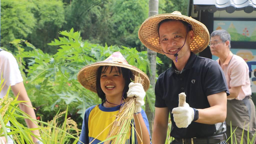 泰山區公所歡慶明志書院256年,邀學童收割首批天泉米,傳承客家先民精神。(許家寧攝)
