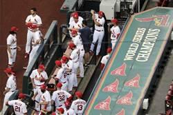 MLB》紅雀累積13人感染新冠 老虎4連戰喊停