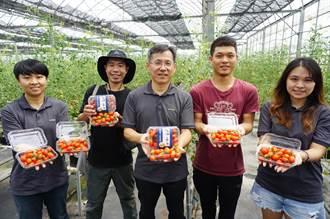藥師種植低鉀蔬果造福腎友 國發基金重點扶植