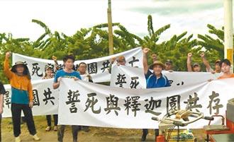 台東88公頃土地將被收回 釋迦農抗議