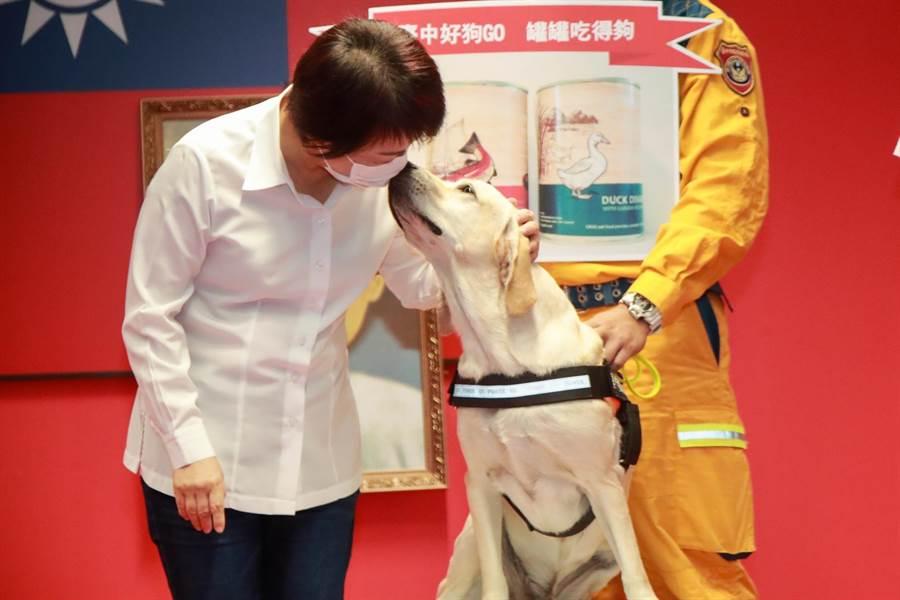 台中市長盧秀燕在市政會議為搜救犬「鐵雄」授階典禮,頻頻比出大拇指,稱讚「鐵雄」的傑出表現,「鐵雄」也友善親了盧秀燕臉頰。(盧金足攝)