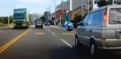 尿急狗衝馬路撞倒騎士 幸僅皮肉傷無礙