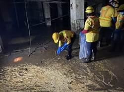 信義區300坪地下室長年未清飄臭味擾民 環保局將開罰