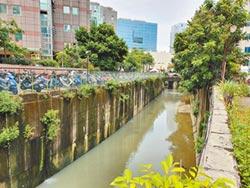 源頭減汙 臭水溝變樂活空間