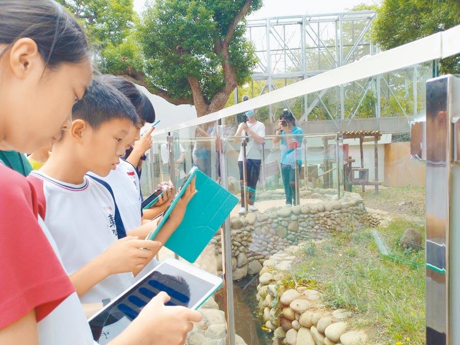 新竹市政府推出「遊台灣學英語」APP供全市師生使用,讓學生隨時融入英語生活中,走到哪學到哪。(陳育賢攝)