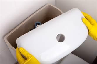 上廁所沒辦法沖水 一開水箱竟竄出1M活蛇瞪眼對視