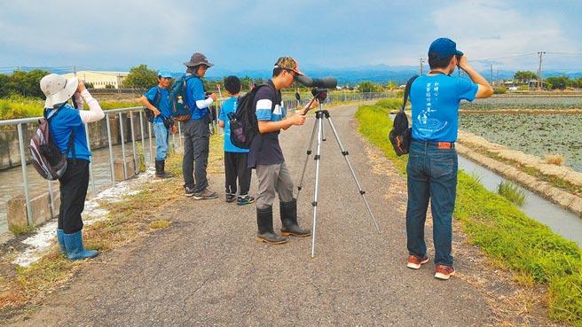 台南水雉夏季數量調查志工在大太陽下揮汗觀察記錄。(台南水雉生態教育園區提供/劉秀芬台南傳真)