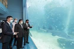 暑假國旅大亮點 鄭文燦開箱Xpark水母區最療癒