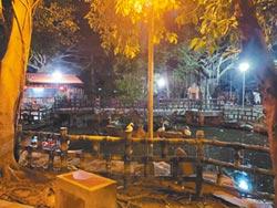 入夜昏暗 板橋農村公園改善照明