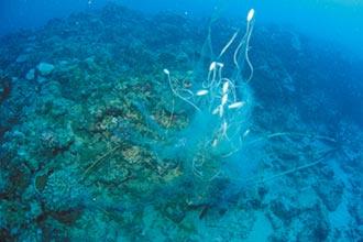 海底見違規網具 琉球漁會批執法只做表面