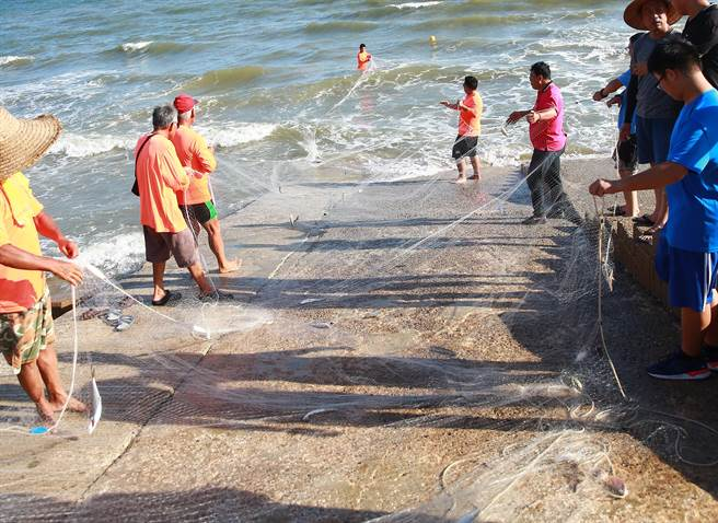 「牽罟」兩尾端固定在岸邊,在圍住魚群後再由岸上的人齊力收網。(縣府提供)