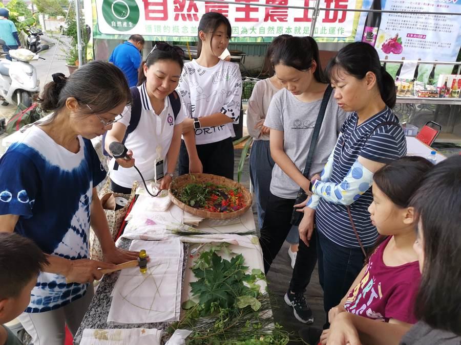 台南山上區玉峯社區小旅行結合食農教育及植物槌染體驗,遊客認真看老師示範。(劉秀芬攝)