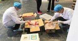 大陸進口冷凍雞翅驗出新冠病毒 部分產品流入市場