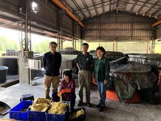 南大聯手嘉義農民 研發麻竹筍發酵水