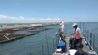 米克拉颱風生成 嘉義沿海防颱不鬆懈