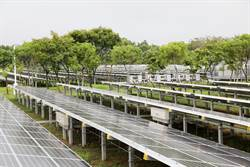 樹電共生 奇美綠能園區年發電量2000萬度