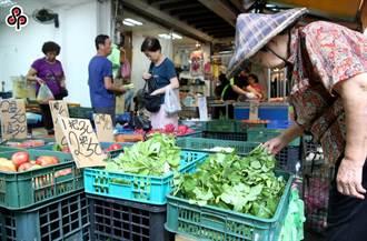 輕颱米克拉遠離 台北批發市場高麗菜漲逾2成