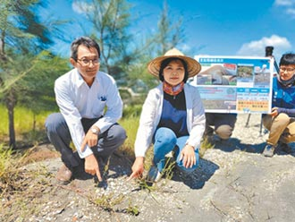 濁水溪防塵見效 下一步復育生態