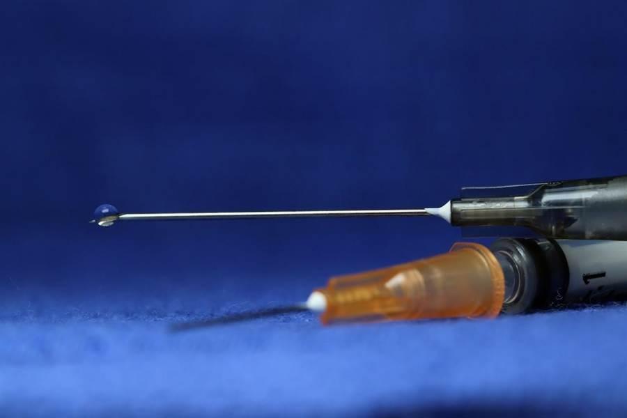 各國搶研發新冠病毒疫苗,我國衛院DNA疫苗經倉鼠試驗證明具保護效果,有望明年下半年量產上市。此為示意圖。 (圖/pixabay)