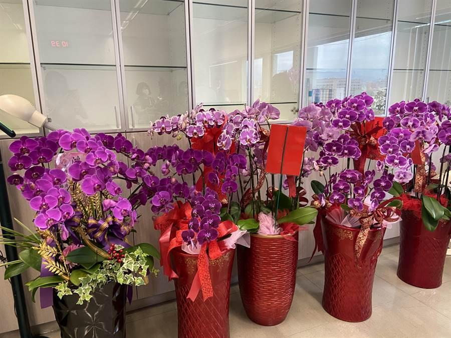 台中市新任政風處長詹政曇,雖還未宣誓布達,辦公室已送來很多祝賀花藍。(盧金足攝)