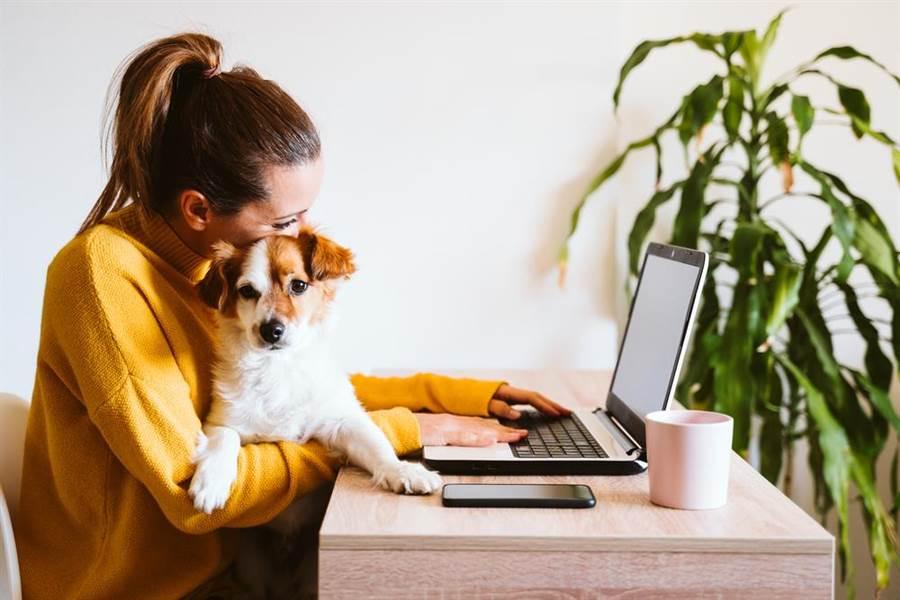 隨著數位科技的發達,有越來越多成為自由工作者的機會。示意圖。(圖片來源/達志影像shutterstock提供)