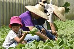 花蓮區農業改良場呼籲 大家用農遊券「宜起花下去!」