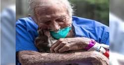88歲老翁突中風癱瘓 忠犬「聽懂主人話」及時救援!