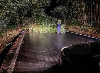尖石竹60線落石樹倒 員警接力鋸木確保用路安全