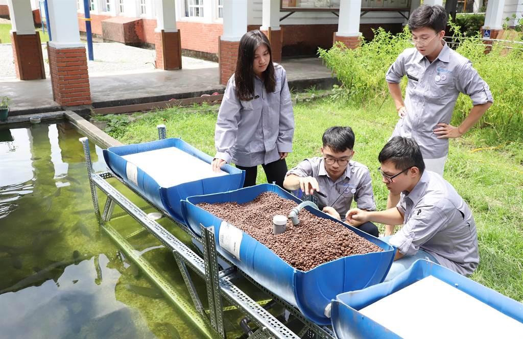 台科大團隊將東澳國小的魚池打造為魚菜共生系統,推動環保及節能概念。(台科大提供/李侑珊台北傳真)