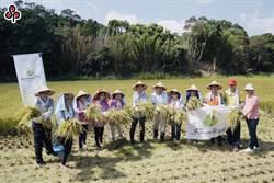 農業專案貸款預告修正 預計10月上路