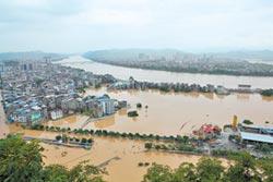 洪澇淹農田 引爆陸糧安危機