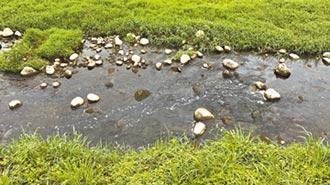疑遭偷排廢水 台中豐原旱溪冒泡