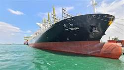 陽明貨櫃船運本業 第二季獲利5.6億