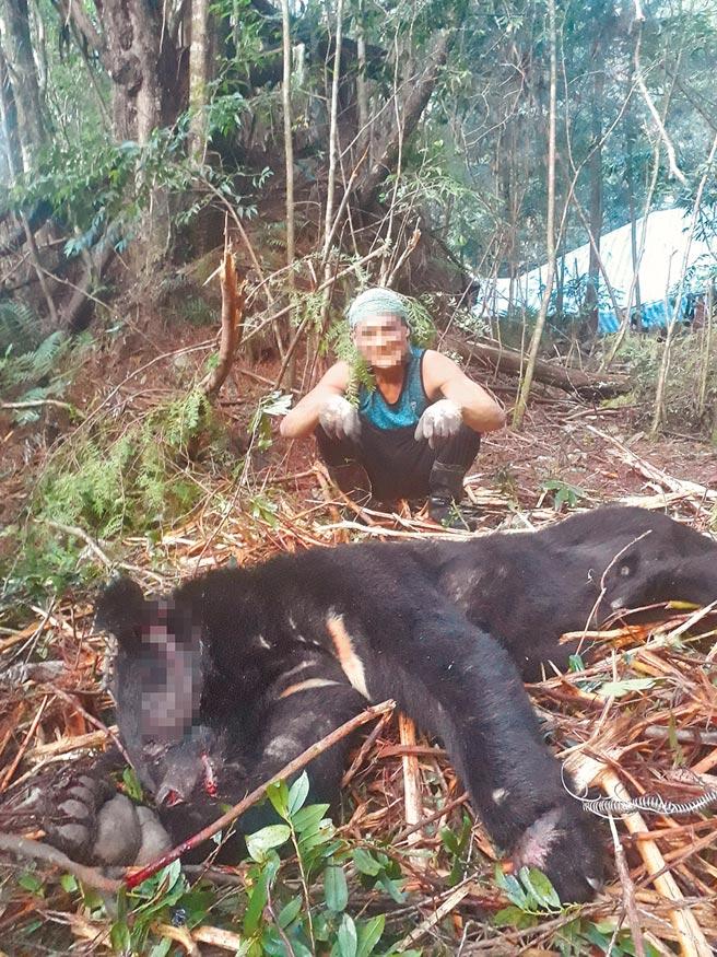 何姓男子供稱設陷阱誤捉台灣黑熊,並將之射殺。(新竹林區管處提供/邱立雅竹縣傳真)