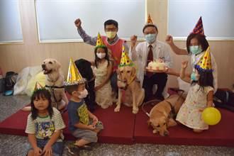 全台第2隻醫療輔助犬亞瑟慶生授袍 即起進駐彰基兒醫伴病童