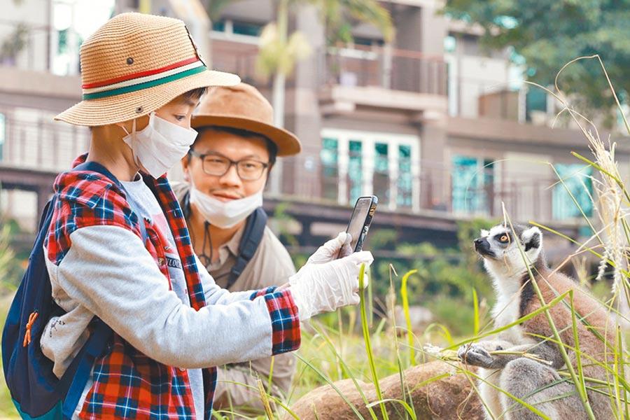 關西六福莊推出「生態攝影微營隊 親子住房專案」,讓小朋友貼近動物、捕捉生態之美。(六福旅遊集團提供)