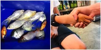 11條魚遭兒倒清潔劑慘死 母帶他登門道歉結局逆轉