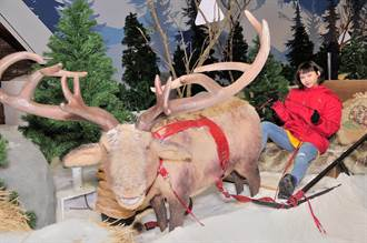 李芷婷體驗零下10度雪展 淘氣坐上麋鹿雪橇 感受雪季迷人景色