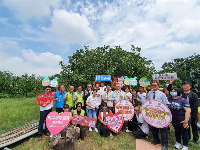 麻豆文旦上市,在地6位柚農攜手獻愛做公益,文旦義賣部分所得捐給公益團體做愛心。(莊曜聰攝)