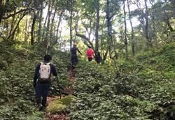 男子到溪南山採集昆蟲標本失聯 搜救人員搜尋未果