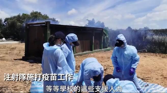 今(19)日牛結節疹感恩記者會上播放自成立應變小組到疫苗注射隊施打疫之紀錄片。(截自影片內容)